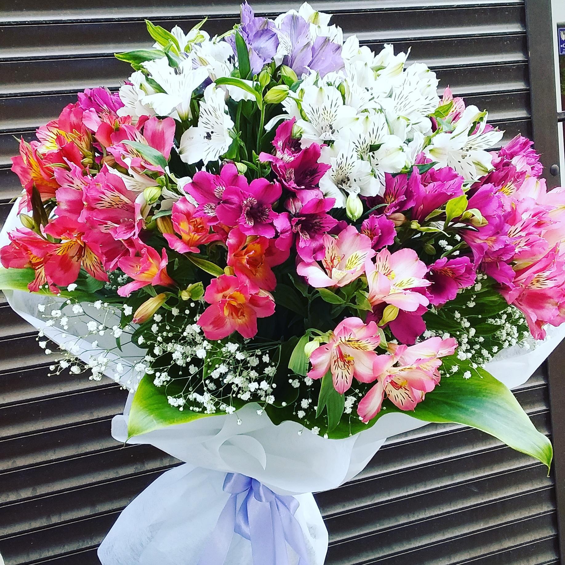 Доставка цветов в севастополе севастопольские фирмы